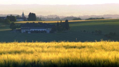 Landlust-Landfrust  Bauerntöchter über das wahre Leben auf dem Hof