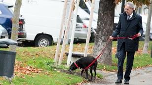 Alexander Van der Bellen mit Hund Kita