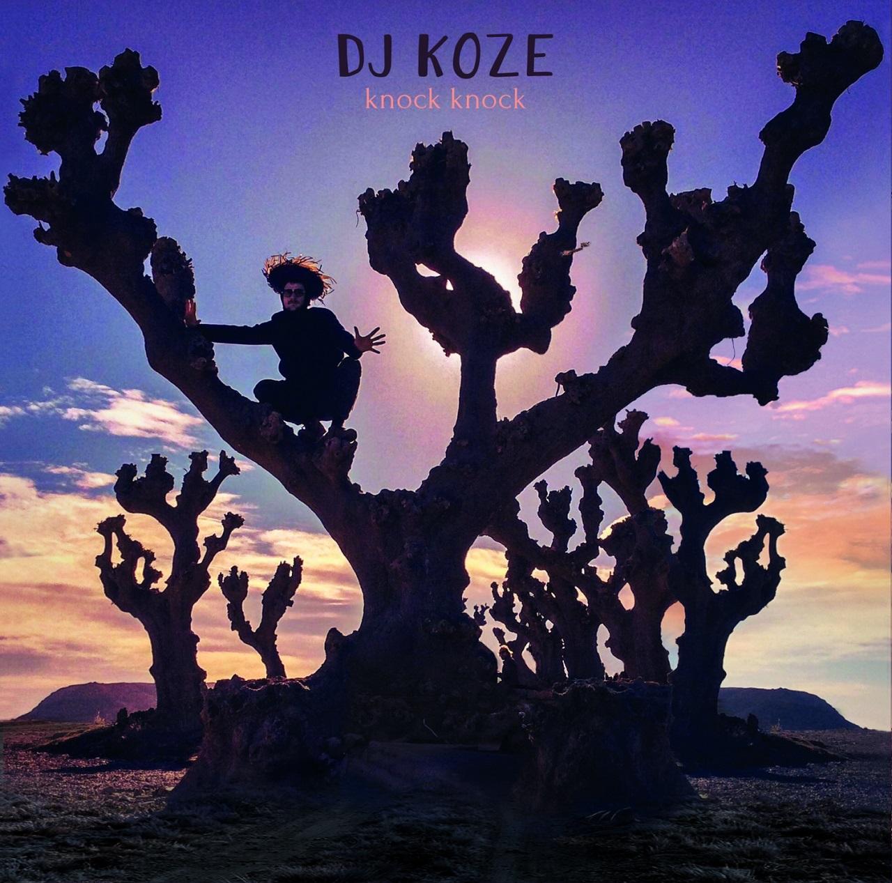 """DJ Koze """"Knock Knock"""" Album Cover"""