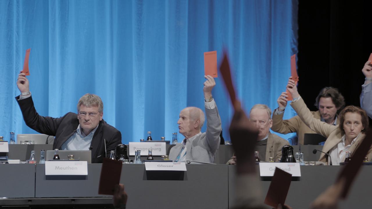 """Abgeordnete heben rote Karten hoch, Bild aus """"Meuthen's Party"""""""
