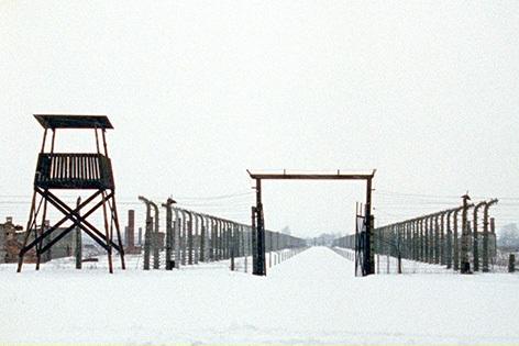 Auschwitz vor Gericht