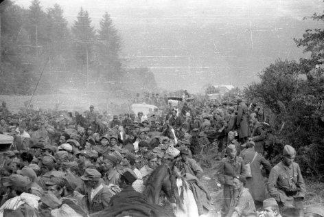 Fluchtpunkt Kärnten - Die Tragödien von Bleiburg und Viktring
