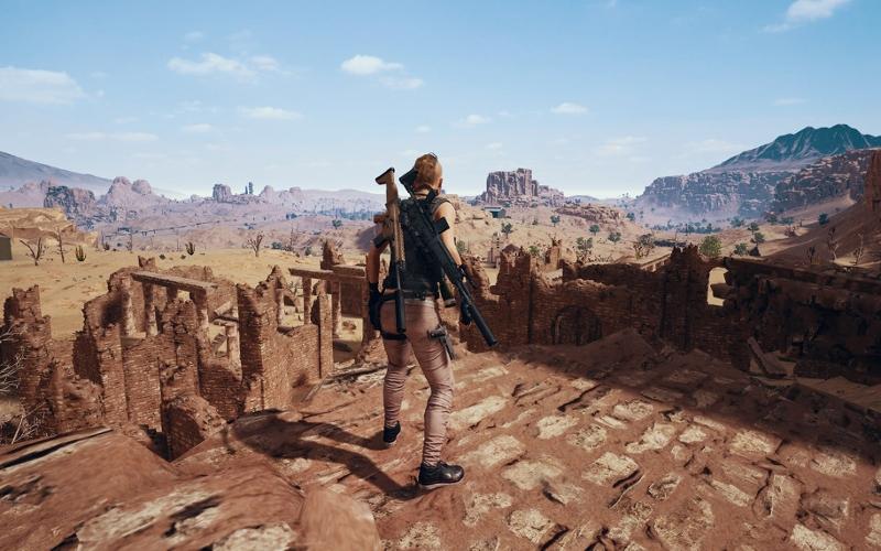 """Screenshot aus """"PlayerUnknown's Battlegrounds"""": Die Spielfigur wird von hinten gezeigt und blickt auf eine weitläufige Naturlandschaft."""