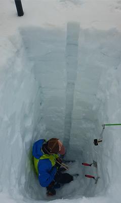 Schneeschacht am Venedigerkees mit Saharastaub an der Oberfläche. Anfang Mai lag auf allen Gletschern Saharastaub.