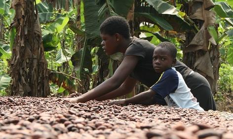 Kind in Ghana hilft Mutter auf Plantage