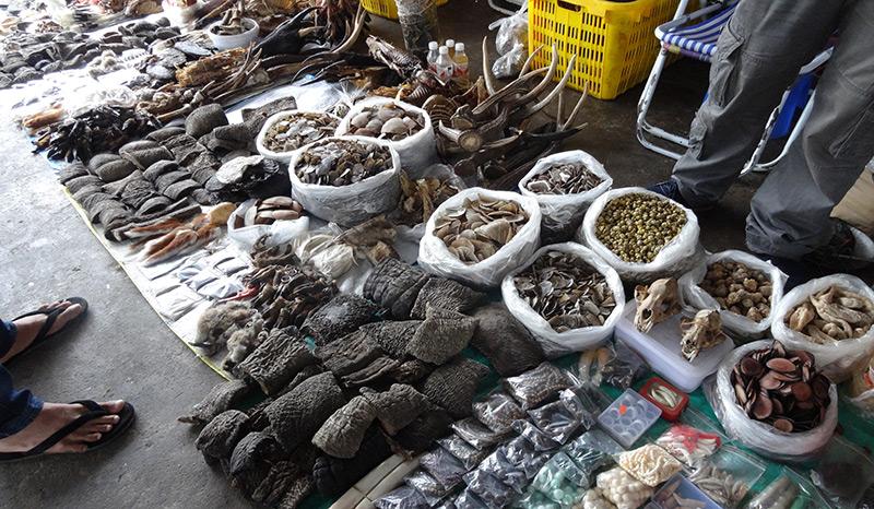 Getrocknete Elefantenhaut, angeboten auf einem Markt