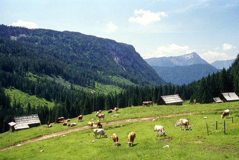 Land der Berge  Bergsommer