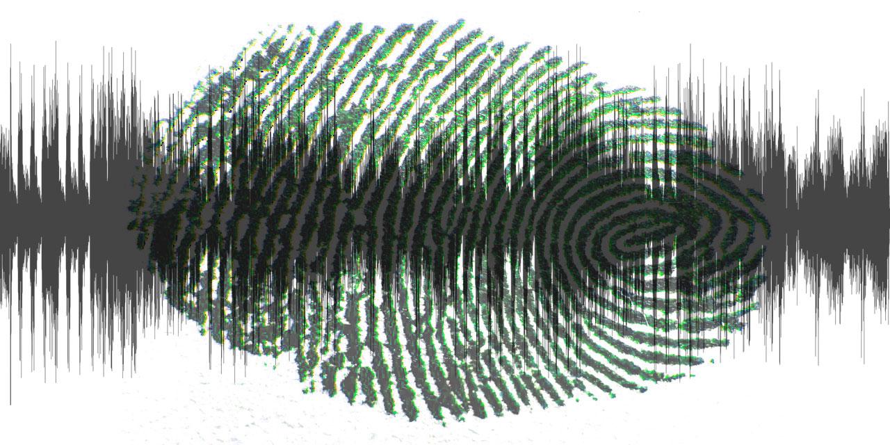 Fingerabdruck überlagert mit Audio Hüllkurve