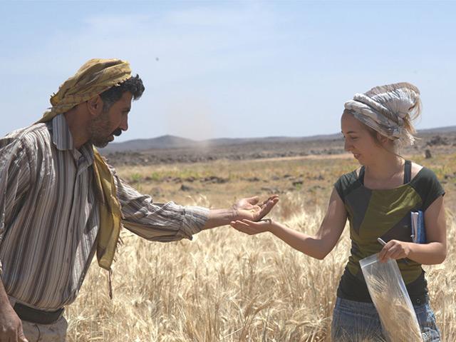 Amaia Arranz-Otaegui und Ali Shakaiteer mit Getreideproben bei Shubayqa