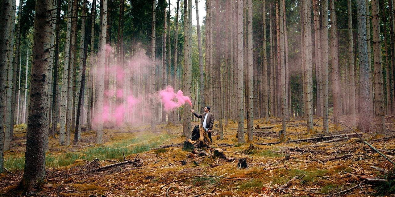 Man mit pinker Rauchkanone im Wald