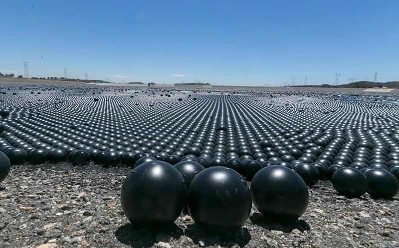 Die schwarzen Plastikbälle in Kalifornien