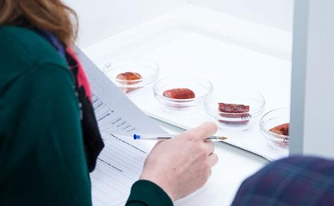 aufgeschnittene Käsekrainer im Testlabor
