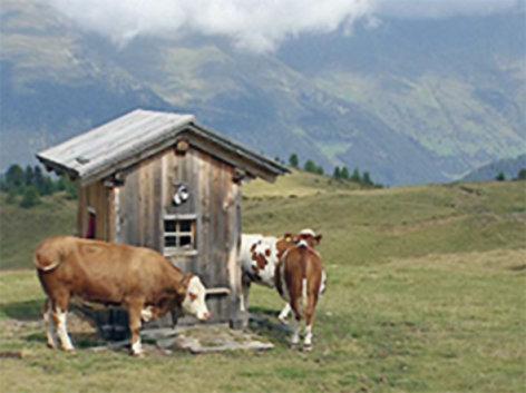 """Land der Berge  Auf die Almdörfer in Süd- und Osttirol  Originaltitel: Alpenübergänge """"Auf die Almdörfer in Süd- und Osttirol"""