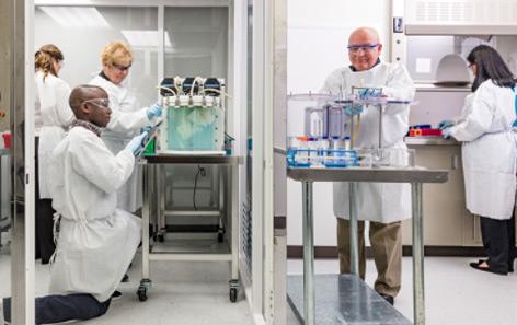 Die Forscher im Labor