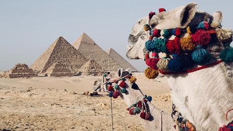 Ägypten, Zwei Kamele vor den Pyramiden