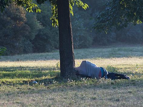 Eine obdachlose Person schläft neben einem Baum