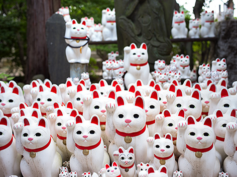 Katzenfiguren mit erhobener rechter Pfote im  Gotokuji-Tempel in Tokio