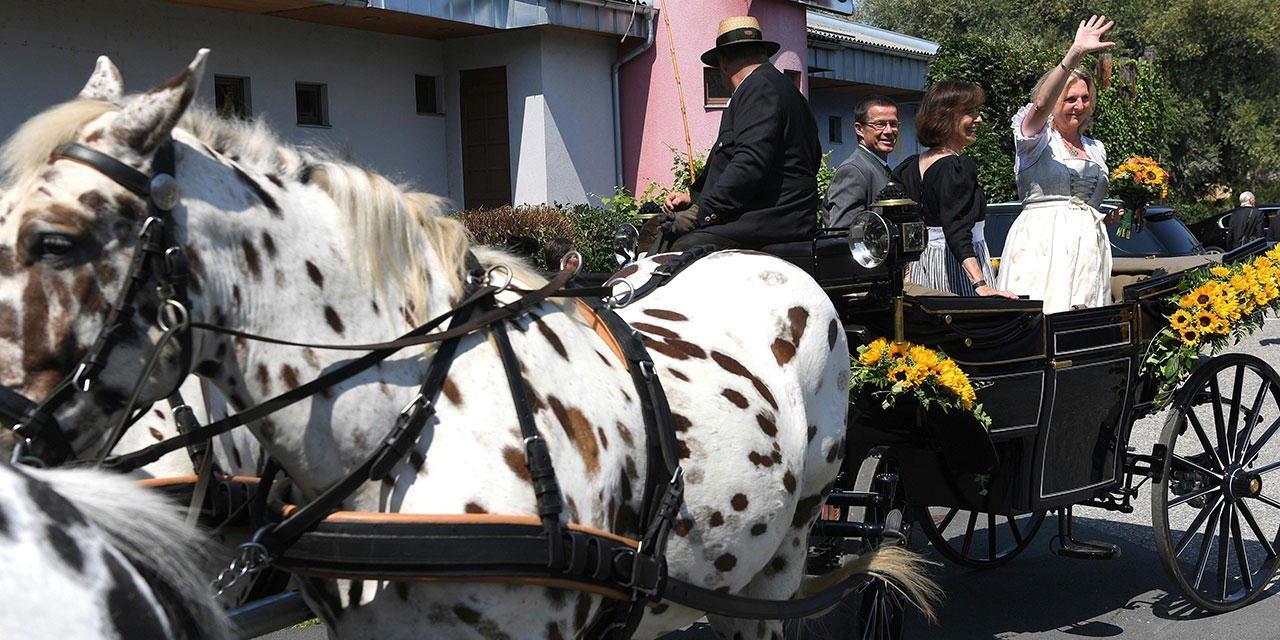 Karin Kneissl steht im Dirndl in einer Pferdekutsche und winkt