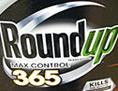 Unkrautvernichter Roundup von Monsanto