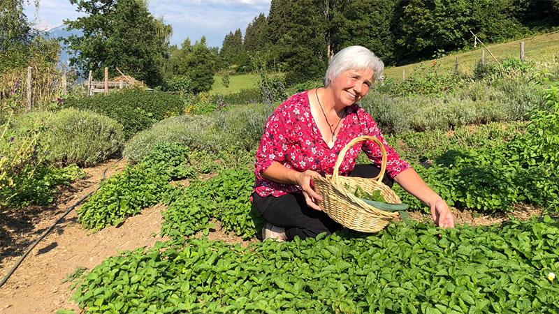 Kärnten Rezept Irschen Kräutercremesuppe Montag 3 September 2018