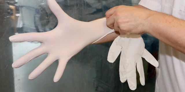Eine Person zieht sich weiße Gummihandschuhe an