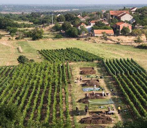 Die Ausgrabungsstätte in Kroatien