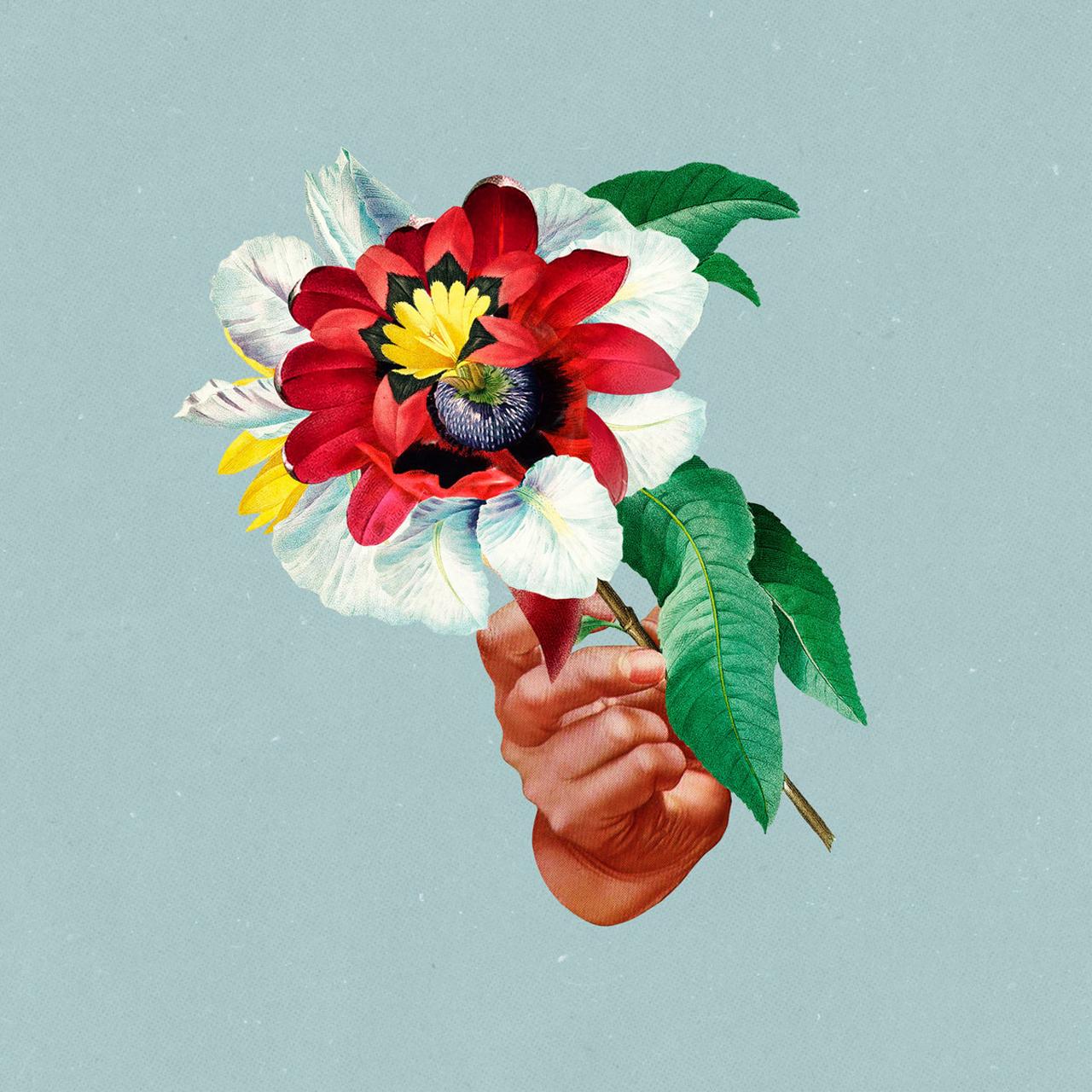 Albumcover mit Blumen