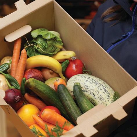 Gemüsebox
