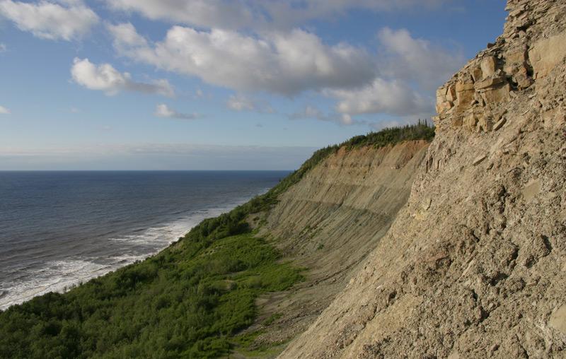 Fundort des Dickinsonia-Fossil