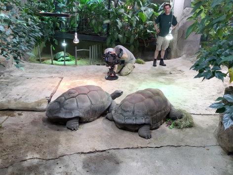 Wilde Reise mit Erich Pröll  Abenteuer Schönbrunn (1/4) - Der älteste Zoo der Welt