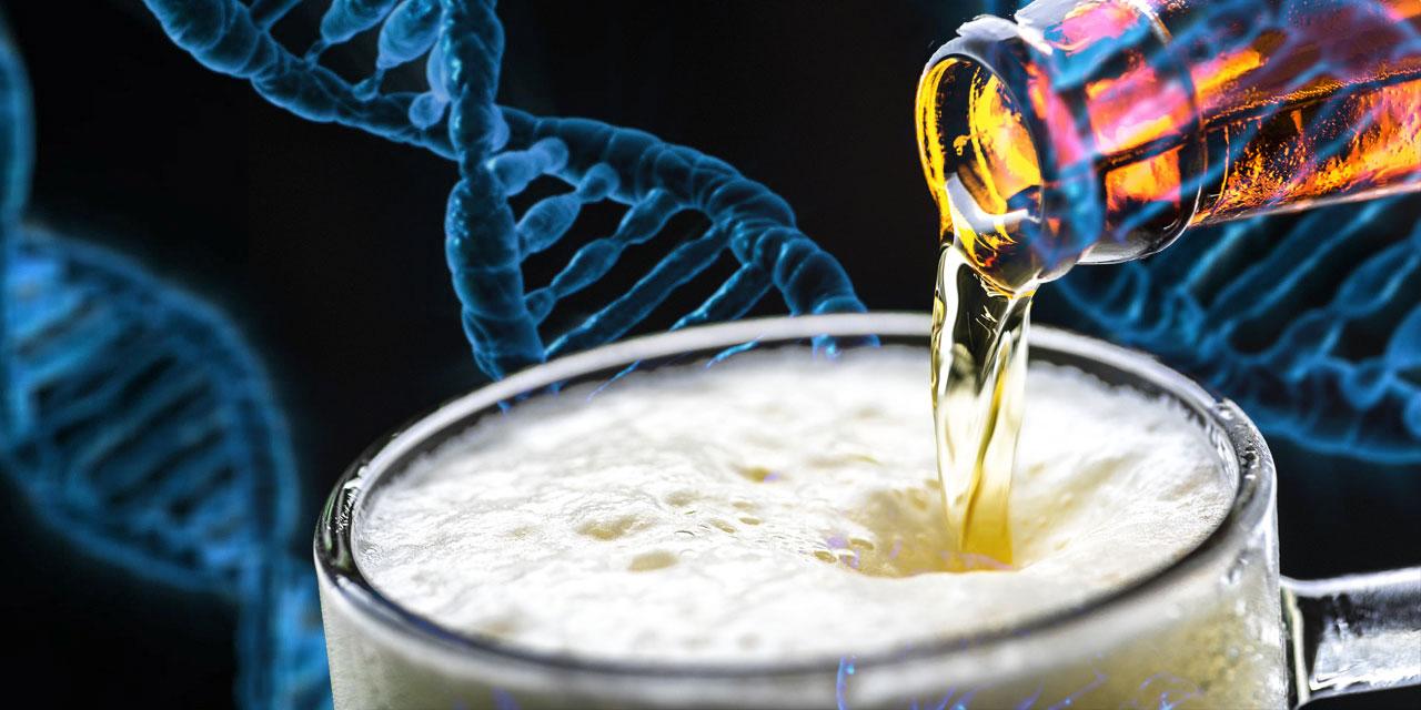 Bier und DNA-Stränge