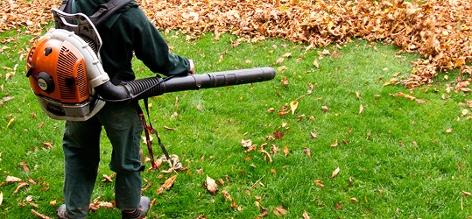 Ein Mann mit Laubbläser treibt Blätter vor sich her