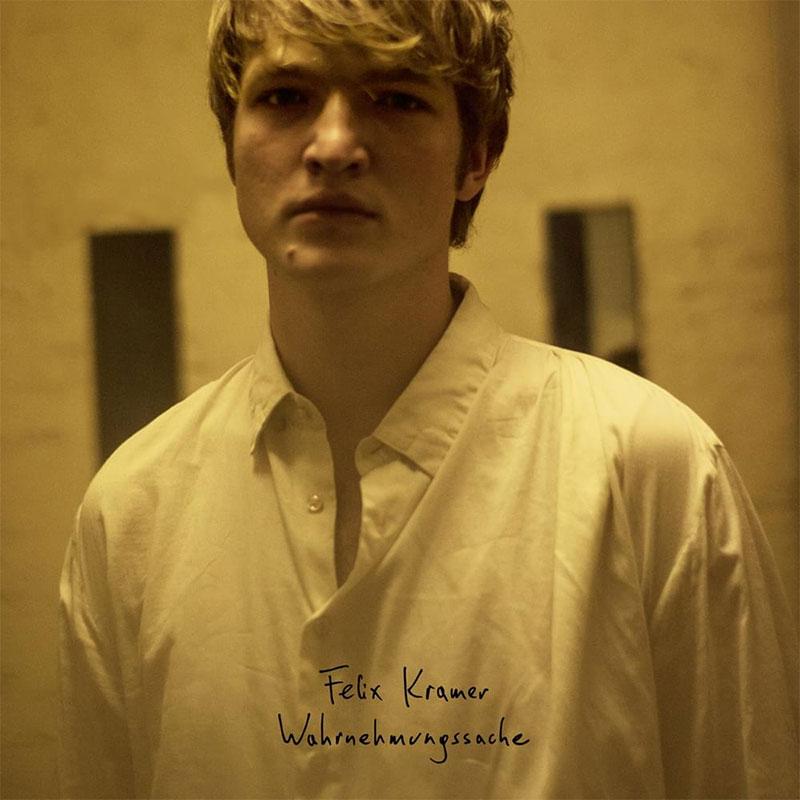 """Albumcover von FElix Kramers """"Wahrnehmungssache"""""""