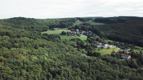 Lebensraum  Wienerwald  A fesche wienerwald partie