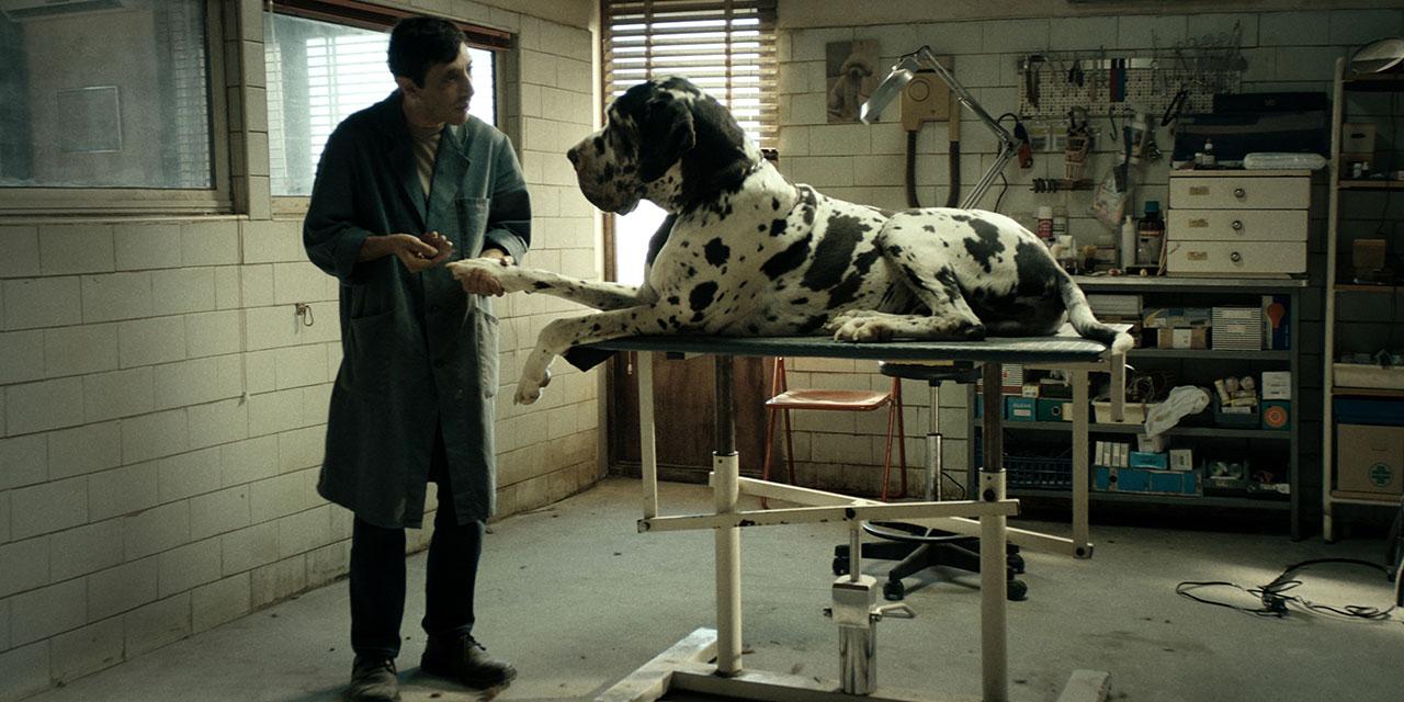 """Filmstill aus """"Dogman"""""""