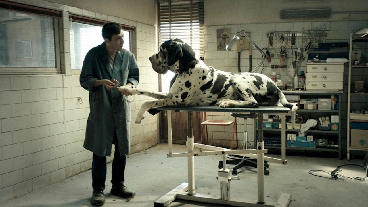 """Szenenbild """"Dogman"""""""
