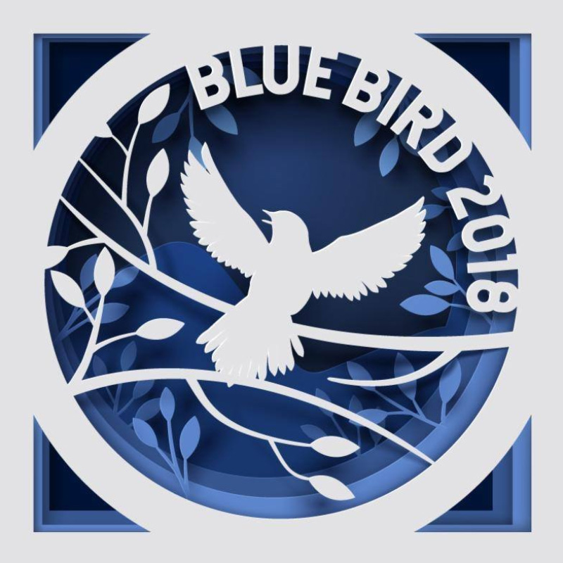 Blue Bird Festival