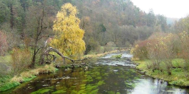 Bilder vom Staudamm am Fluss Kamp, dem Fluss selbst und Umweltschützern