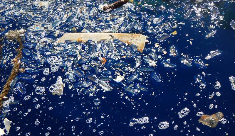 Plastikmenge, die in einer Woche gesammelt wurde