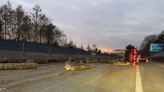 Holzstämme auf der Südautobahn