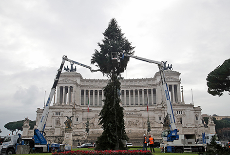 Christbaum in Rom