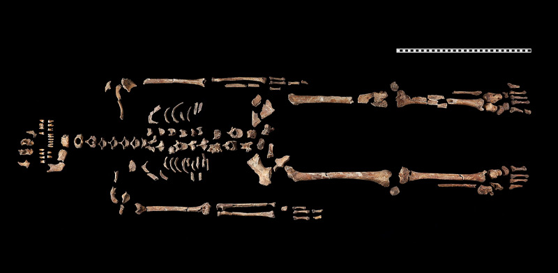 """Das Skelett der """"Heiligen"""" vom Hemmaberg"""
