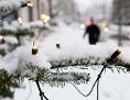 Lichterkette auf einem Weihnachtsbaum im Schnee