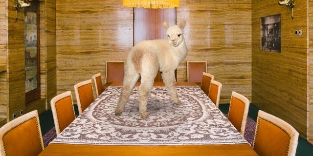 """Kalender """"Better Living With Alpacas"""" 2019"""