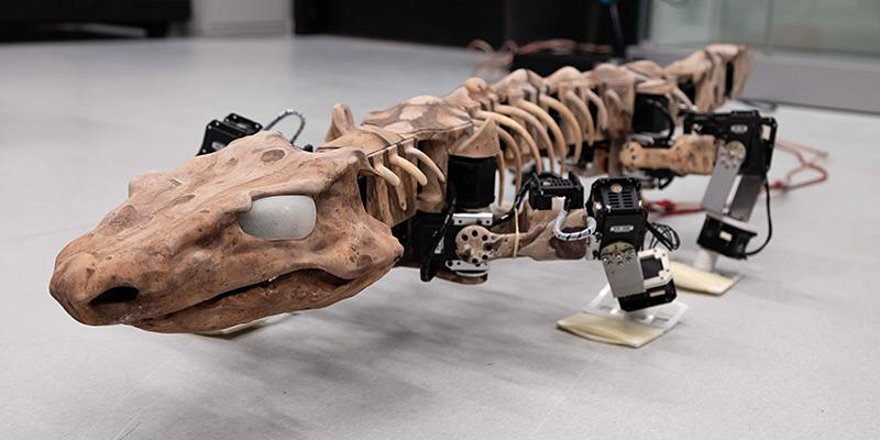OroBOT, ein Roboter nach fossilem Vorbild