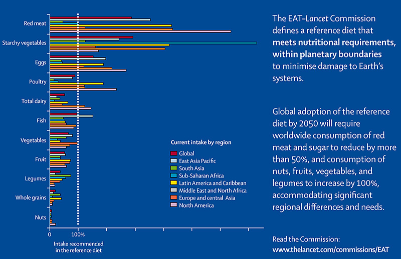 Grafik zu den Ernährungsempfehlungen
