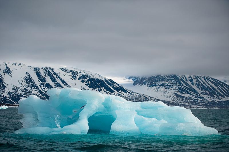 Superkeim-Gene in der Arktis entdeckt