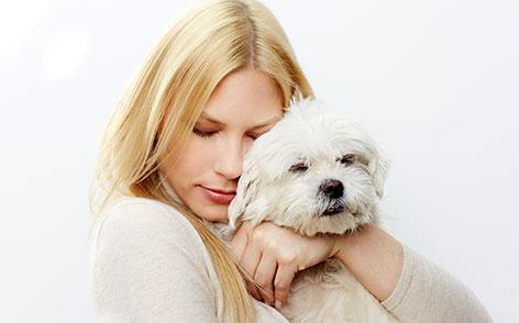Frau hat einen kleinen Hund im Arm