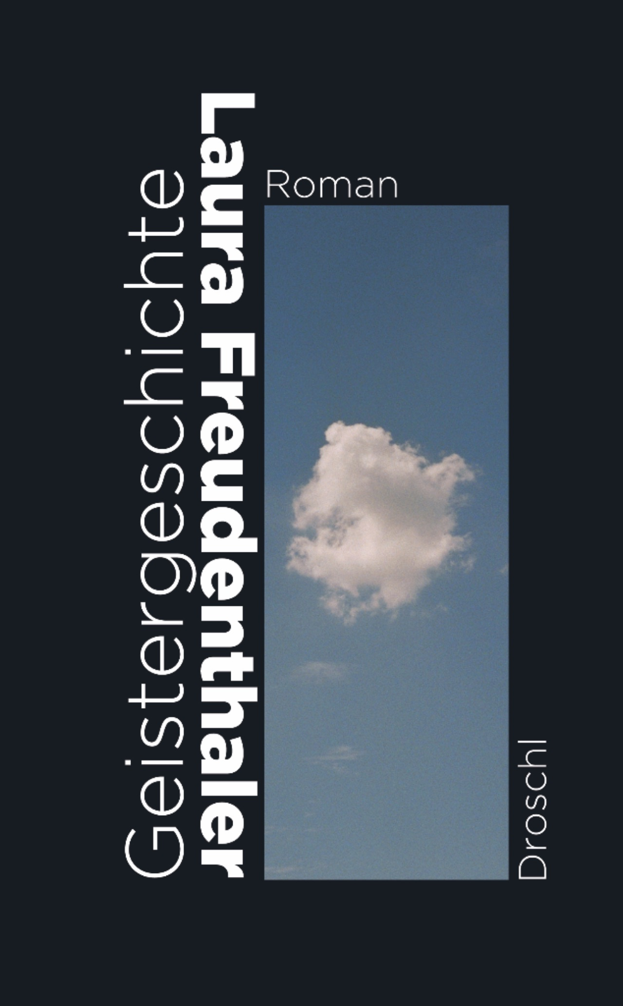 """Cover """"Geistergeschichte"""" von Laura Freudenthaler"""