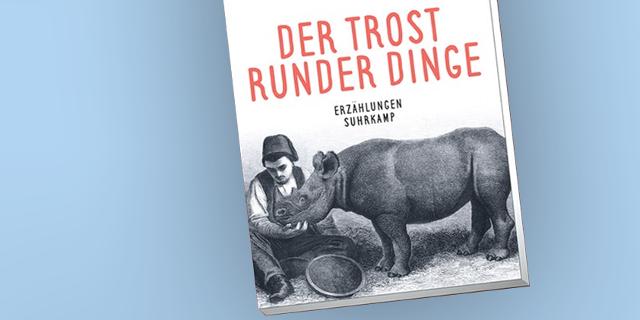 """Clemens Setz' Buch """"Der Trost runder Dinge"""""""